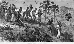 height of slave trade