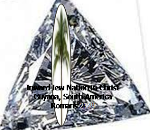 A polished Diamond with Palm tree signifying growth and victory of our InJew Nation in Christ.